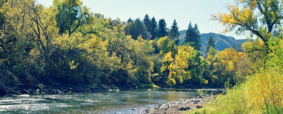 Animas River Fly Fishing Duranglers