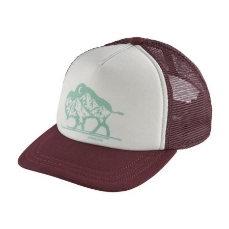 Patagonia Women's Nordic Bison Interstate Hat 38241_DKCT